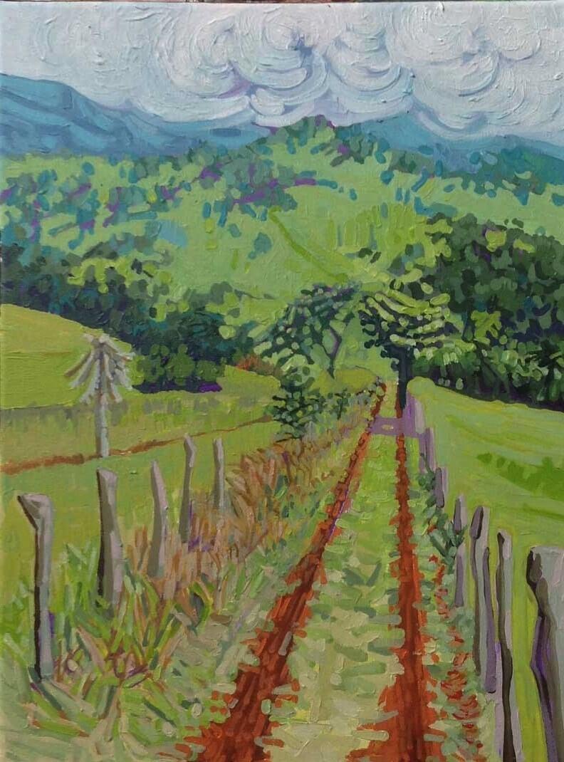 Camino al Volcán Tenorio Image