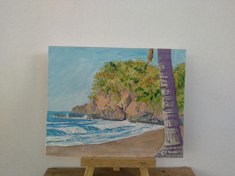 Playa corozalito Image