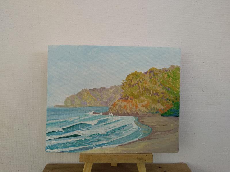 Playa corozalito 2 Image